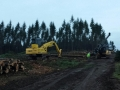 commercial-tree-equipment-grouping-portand