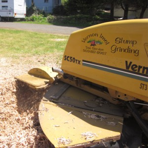 Stump Grinding Portland OR