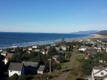 coastal-view-tree-service-