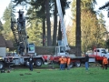 oregon-tree-pruning-services-truck-cranes