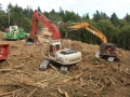 Forestry cleanup with heavy commercial equipment