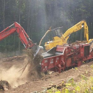 Excavation Portland