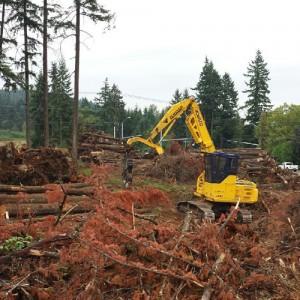 Commercial Logging Portland, OR