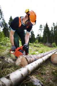 Tree Service Estacada