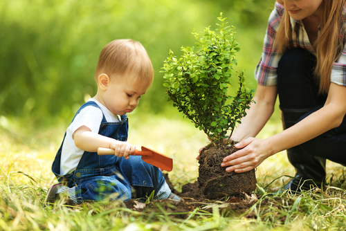 Image result for kid and tree