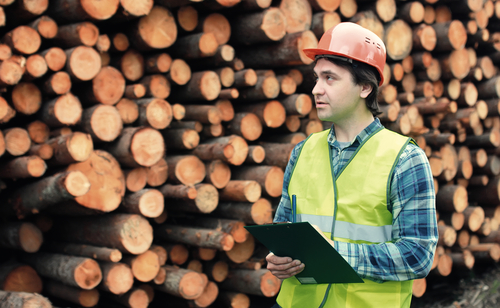 Understanding the Job of a Logger