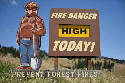 5 Ways to Prevent Forest Fires - Save Oregon Trees