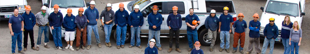 The friendly, knowledgeable employees of Mr. Tree Services standing in front of service trucks. - About Mr Tree