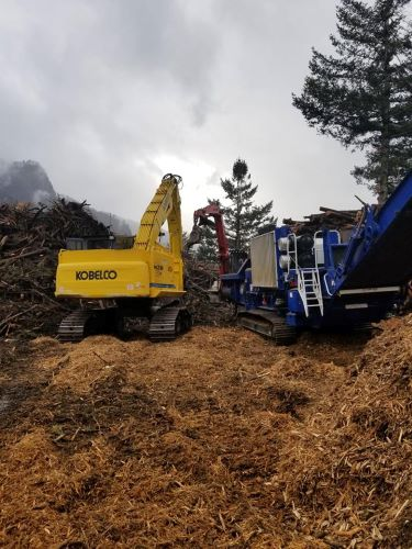 mr-tree-how-is-land-clearing-done
